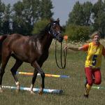 Majsterka SR juniorov a mladých jazdcov v endurance 2011 Lenka Kremlová a Cézar