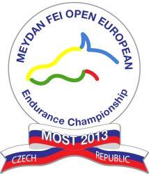 Logo_Most_2013_m