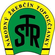 nzt-logo